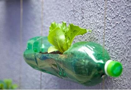 Blog do Julio ensina a preparar uma horta vertical em casa ou no apartamento